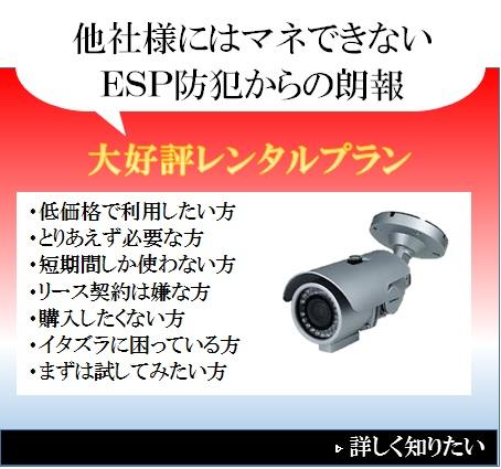 レンタルプランで防犯カメラ設置